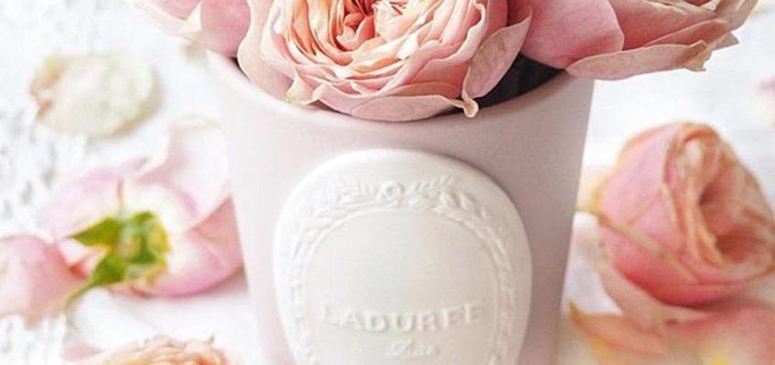 Velas perfumadas Ladurée